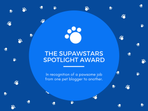 supawstars-spotlight-pet-blogger-award